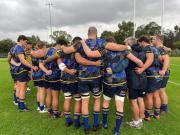Shute Shield Mid-Season Review